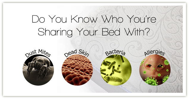 Harmful element your share your bed with like bacteria, dead-skin-cells, dust mites and various types of allergies