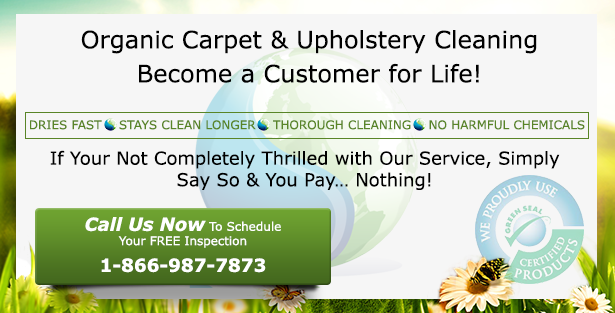 organic-carpet-and-area-rug-cleaning