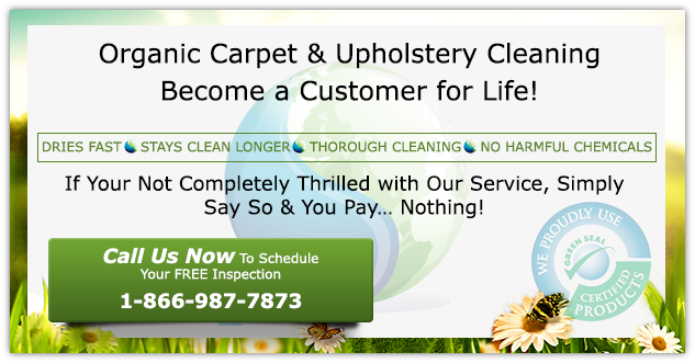PureGreen certified cleaning service