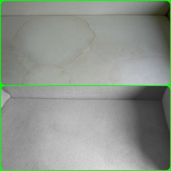 Before and After Pictures Carpet Cleaning NYC : Rug ...