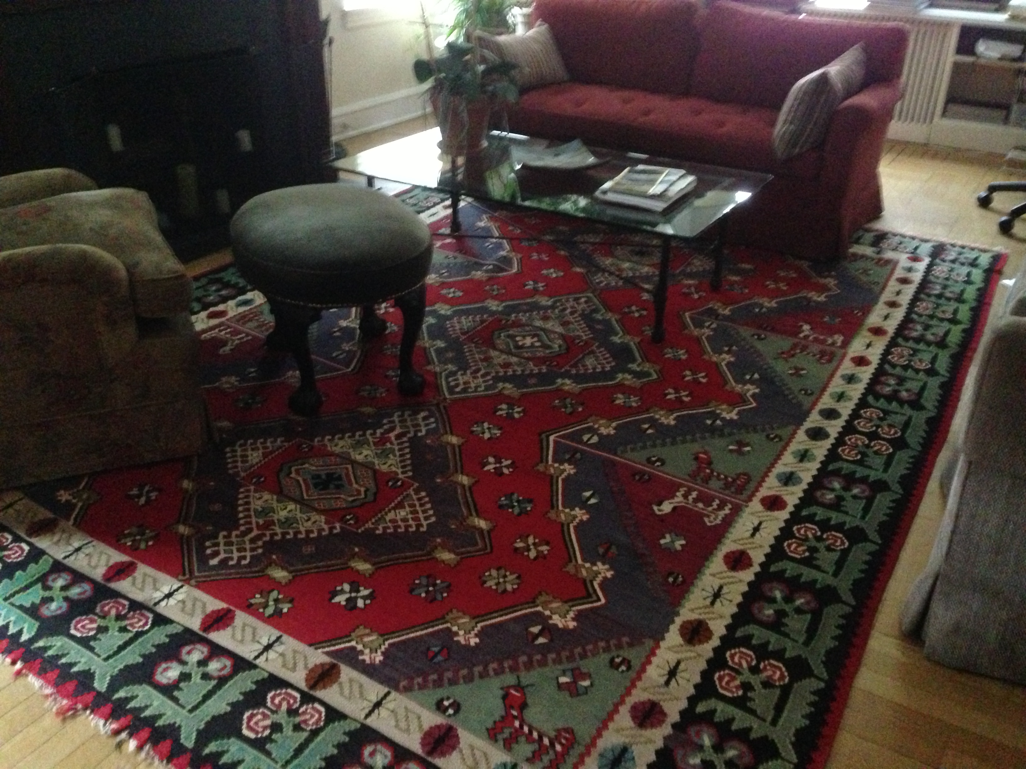 should ask a Professional Rug Cleaning