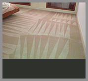 professional-organic-carpet-cleaning