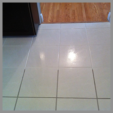 profesionals-in-tile-and-grout-cleaning.png